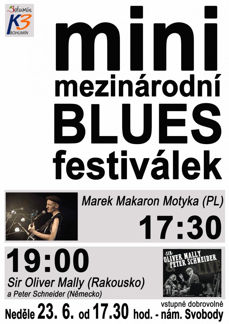 Zobrazit detail akce: Mini mezinárodní blues festival
