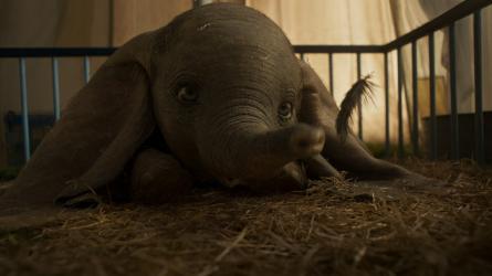 Zobrazit detail akce: Dumbo