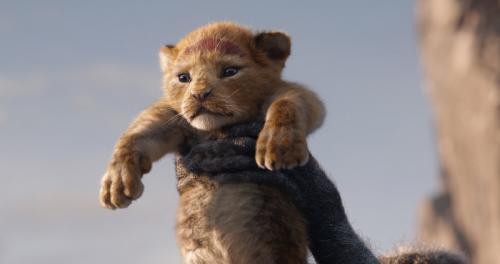 Zobrazit detail akce: Lví král