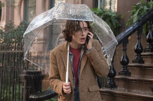 Zobrazit detail akce: Deštivý den v New Yorku (on-line projekce)