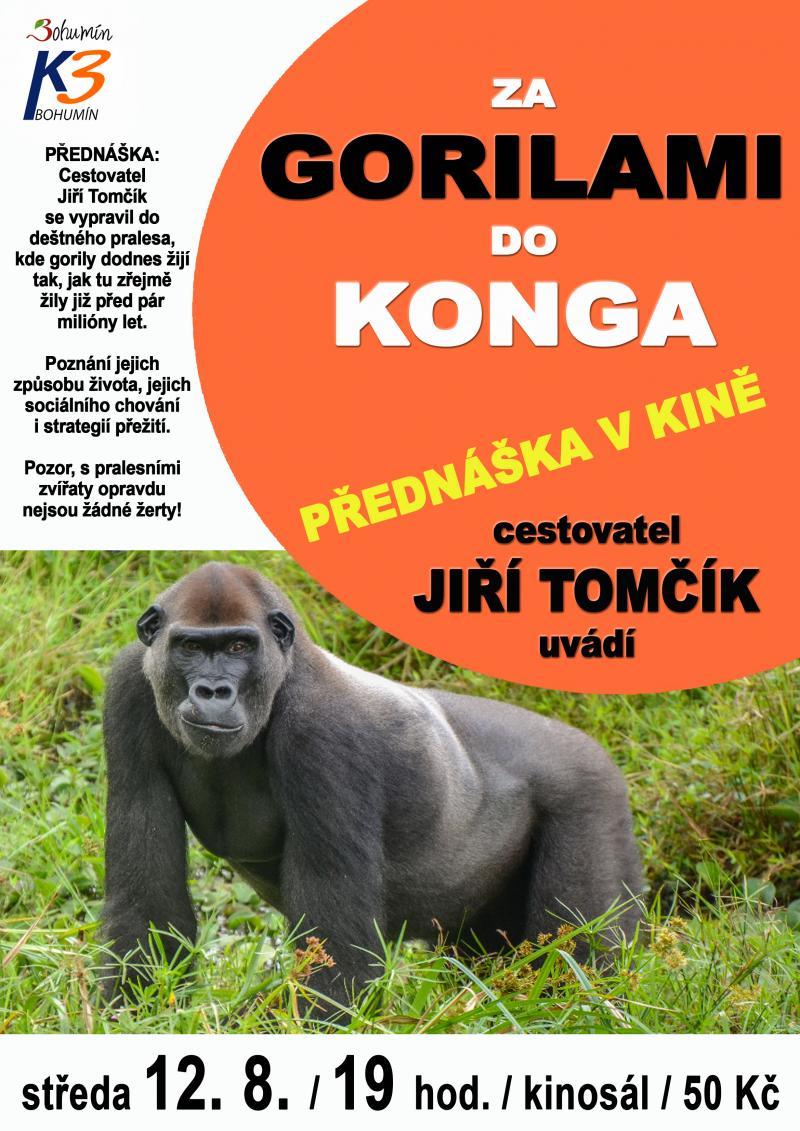 Zobrazit detail akce: Za gorilami do Konga